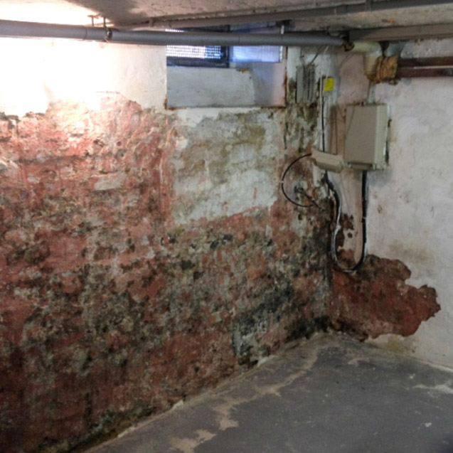 Gebäudetrocknung bei feuchter Mauer